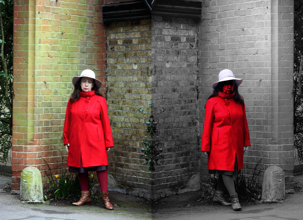 Red Coat Portrait Diptych by aegiandyad