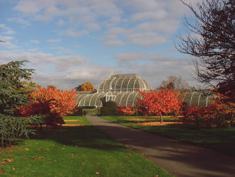 A View Of The Palm House In Kew Gardens 2007 by aegiandyad