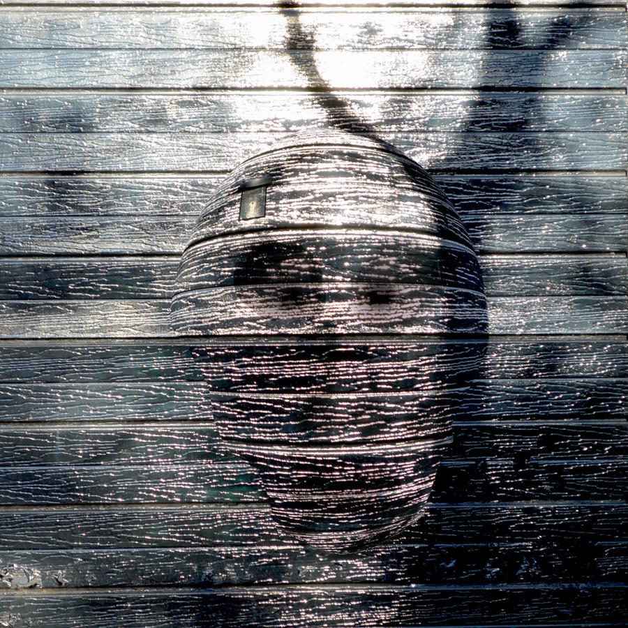 The Haunted Garage Door by aegiandyad