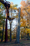 Kew Gardens Tree Top Walk In the Late Autumn