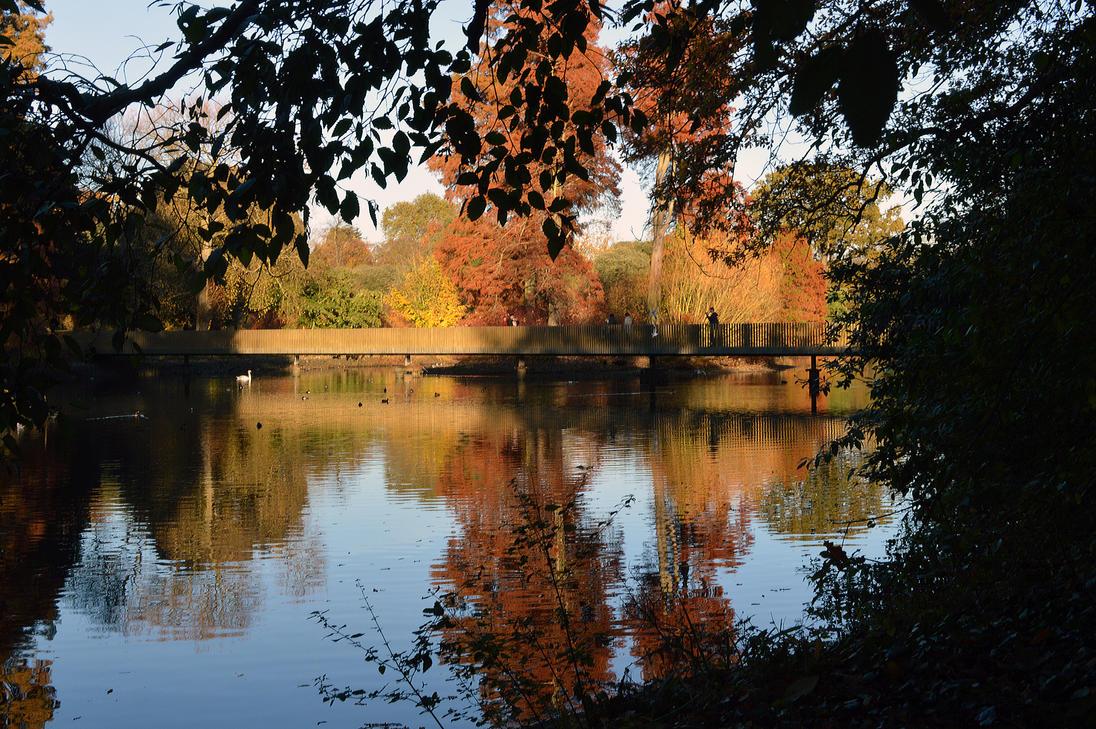 The Sackler Crossing Footbridge Over A Lake At Kew by aegiandyad