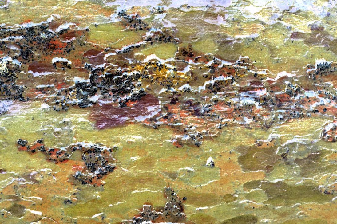 London Plane Tree Bark Fake Landscape Painting by aegiandyad