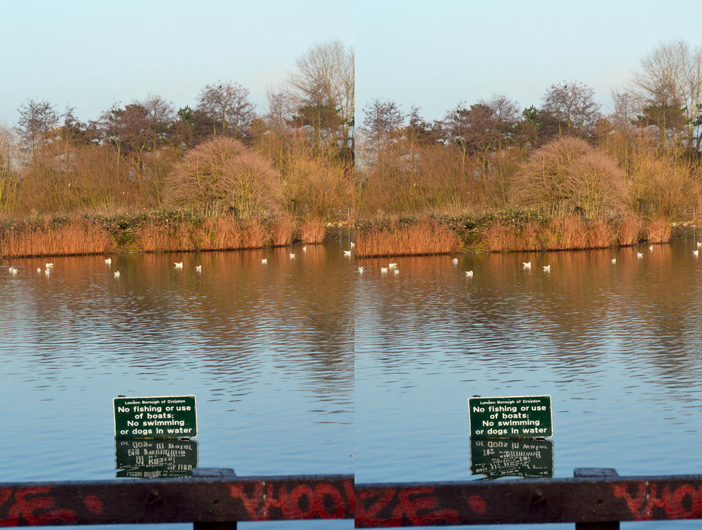 South Norwood Country Park Lake In XI View Stereo by aegiandyad