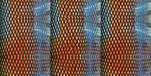 Warped Bottle Net Autostereogram Triptych