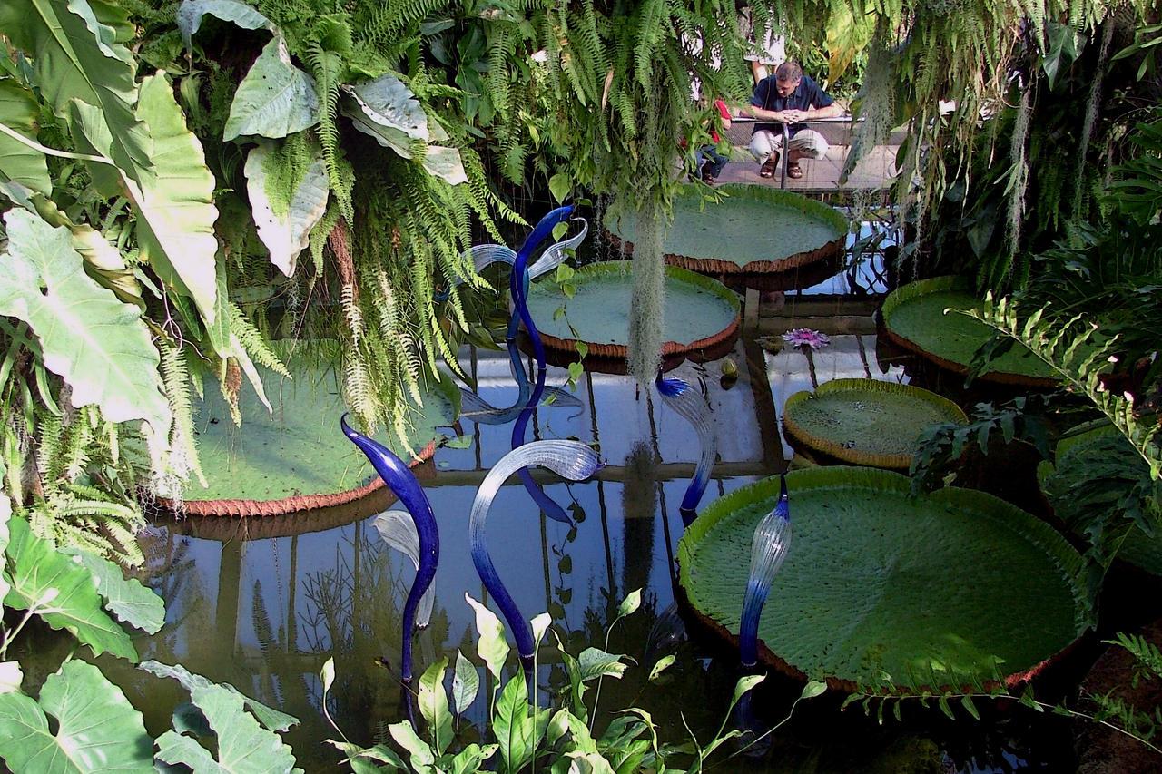 Chihuli glass hamadryads pow amazon lily pond kew by for Garden pond amazon