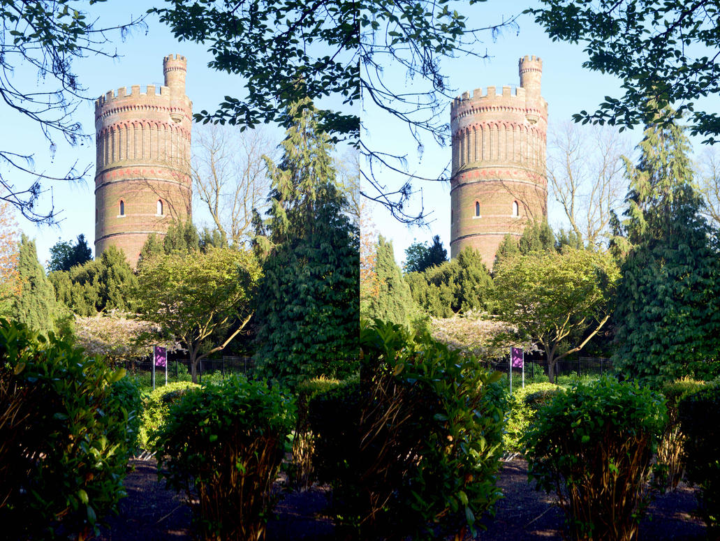 The Victorian Water Tower In Park Hill by aegiandyad