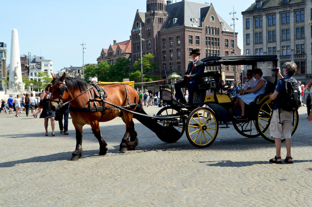 Amsterdam Horse And Carriage by aegiandyad