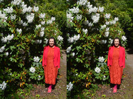 May Composition In White Pink Orange and Green by aegiandyad