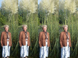 Mrs a* A In Four Gang Stereo With Pampas Grass by aegiandyad