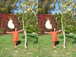 Autumnal Stereoscopy Mrs a* In The Walled Garden by aegiandyad