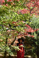 Beech And Maple Composition With Mrs a* In Red by aegiandyad