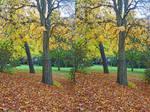 Tree Portrait Reverse Angle Stereoscopic Painting
