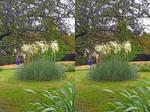 A Couple Using The Pampas Grass Set