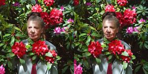 Mrs a*, Rhododendron Flowers 3-D Portrait, Detail
