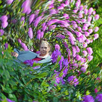Mrs a* In A Whirlpool Of Rhododendron Flowers