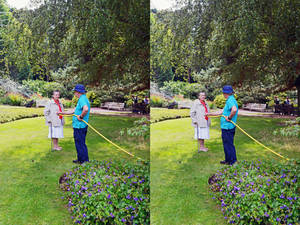 Mrs a* In Conversation With Coombe Wood's Gardener