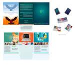 ds-brochure design