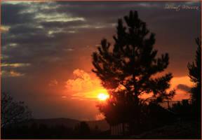Winter sunset by ShlomitMessica