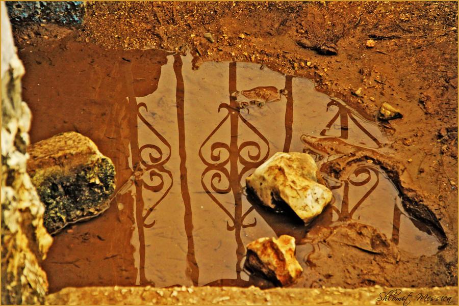 Nice reflection by ShlomitMessica