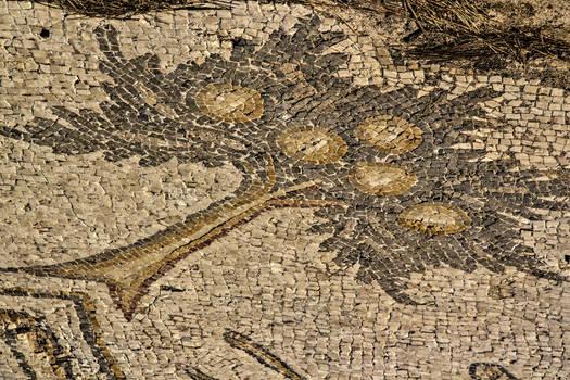Floor mosaic 2
