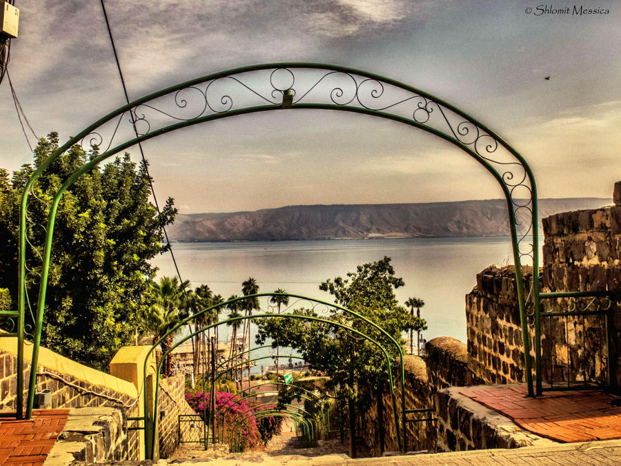 View to the lake by ShlomitMessica