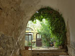 Spring in the old city 3