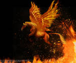 Phoenix Horse
