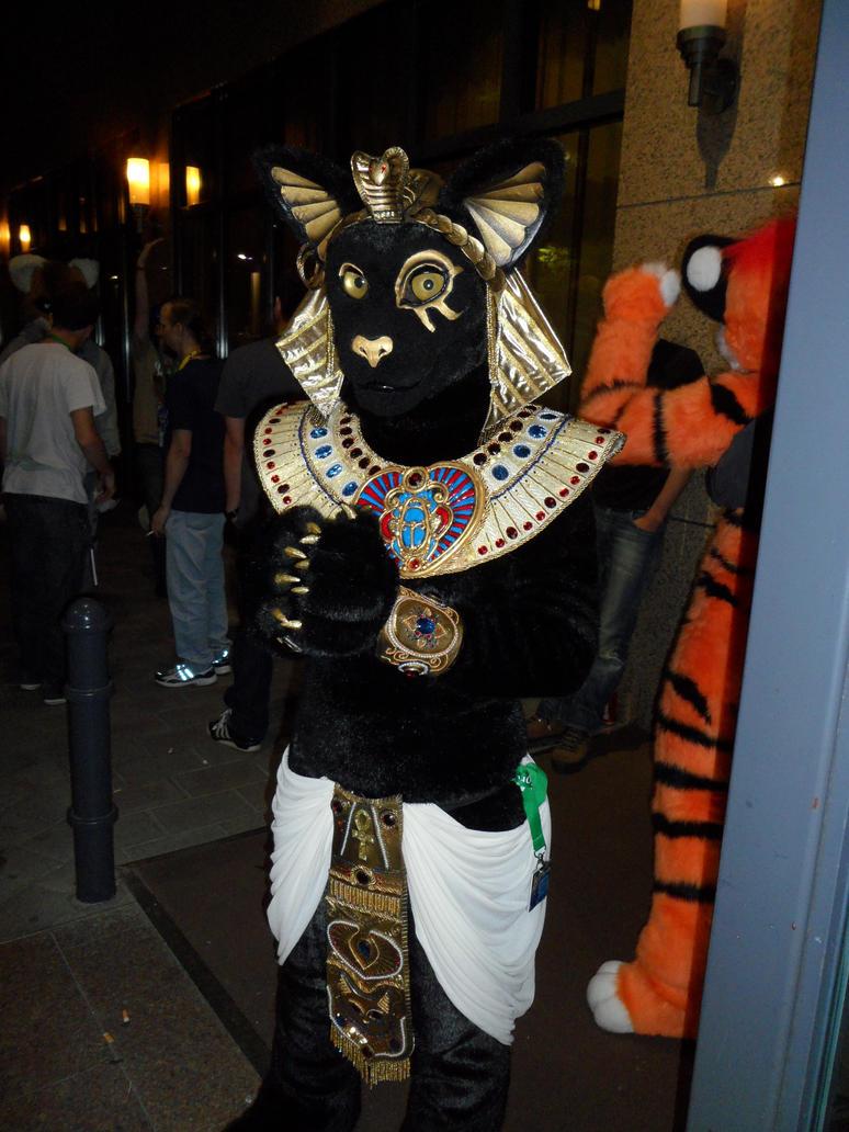 Cat Costume Accessories Uk
