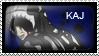 Pack Stamp 2: Kaj by UnseenChaos