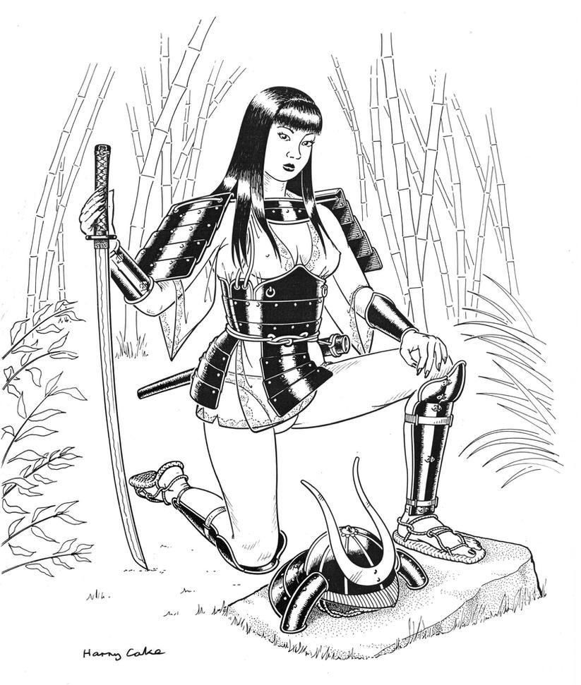 Samurai-Lady by Harry-Cake
