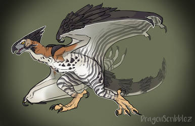 Ornate Hawk-Eagle Dragon by DragonScribblez