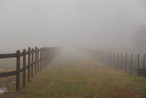 Fog 28 by lumibear