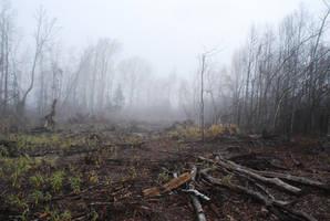Fog 64 by lumibear