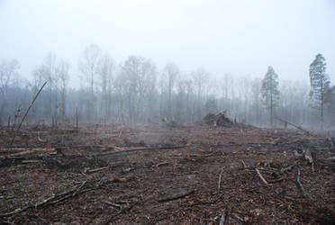 Fog 72 by lumibear