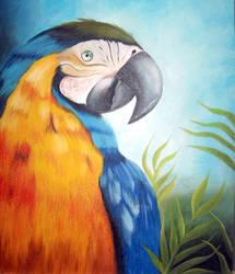 Arara - Pintura a Oleo