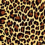 Leopard Print texture pattern
