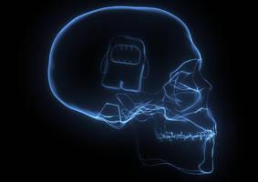 Domo + Head by deaflux