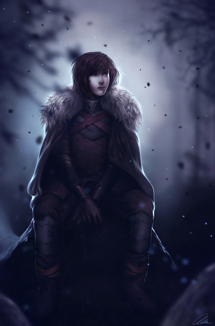 Winter Is Comming_Bran Stark Comission by Lavah