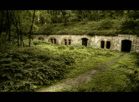 Forest Fortress by Beezqp