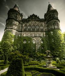 Castle Back Yard