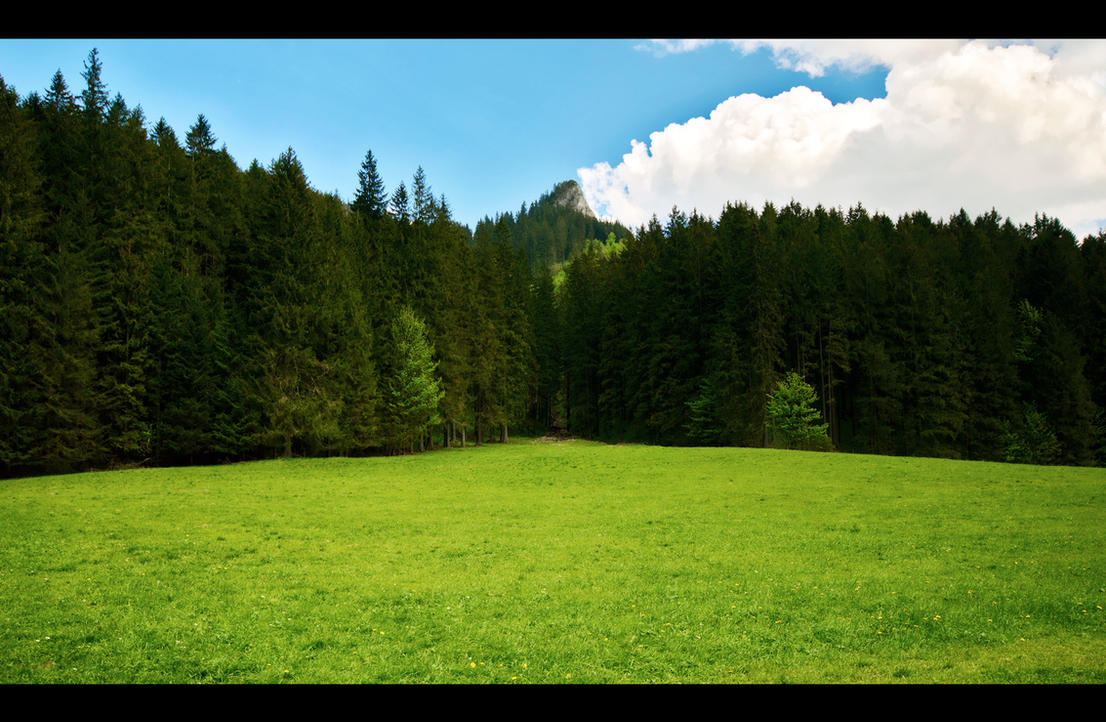Meadow and a Peak by Beezqp
