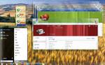 18.07.2010 longhorn desktop