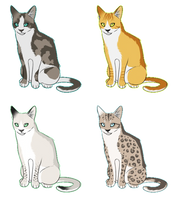 Mystery Cat Adoptables 10 points each [CLOSED] by AdoptablesForWorld