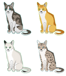 Mystery Cat Adoptables 10 points each [CLOSED]