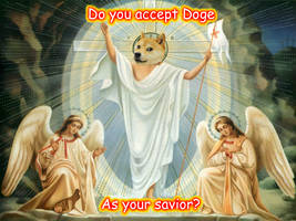 Doge is Life