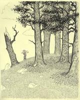 In the woods by VinceAndrews