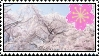 Cherry Blossom Sakura Stamp by ririnyan