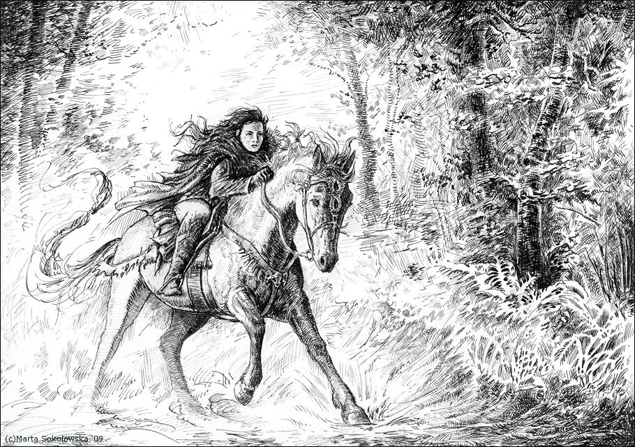 pursuit by weremoon