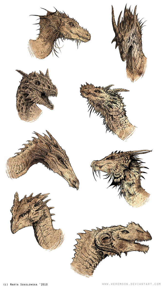 dragon heads by weremoon