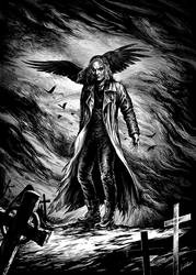 the Crow  ( for Goverdose#07) by weremoon
